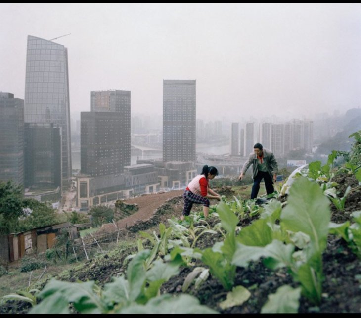 Urban land coexisting with agriculture.