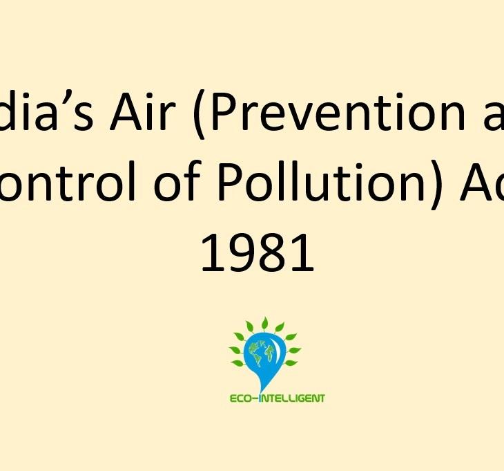 air act 1981